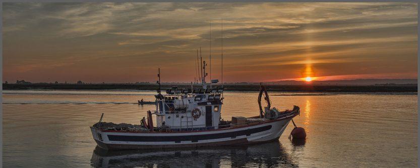 Общините Бургас и Камено започват работа по проект за  създаване на местна  инициативна рибарска група