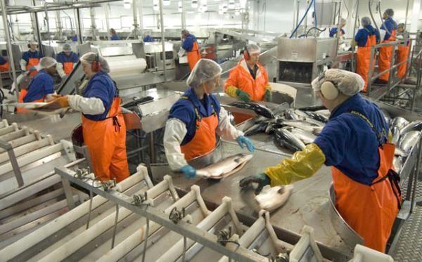 """Покана за участие в информационни срещи във връзка с мярка № BG14MFOP001-4.005 """"Преработване на продуктите от  риболов и аквакултури"""""""